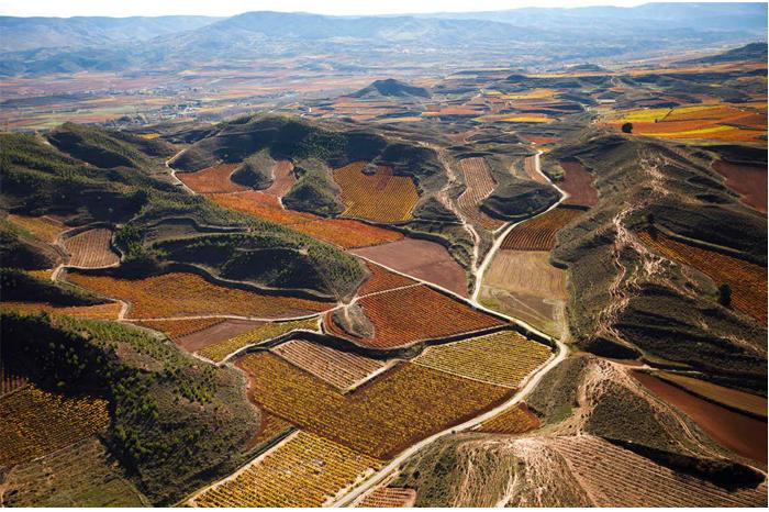 Terroir dynamicy in rioja - New rules, new wines