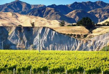 Marlborough the Crossings/New Zealand Winegrowers
