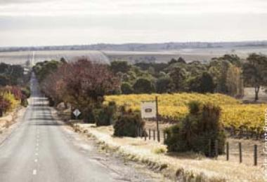 Grant Burge Wines – Barossa: It's in the blood