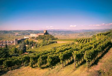 The Castle of Soave on Tenda Hill  dates back to the Middle Ages. (Photo: isaac74 - stock.adobe.com)