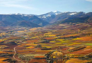 Rioja - Flagship on the move