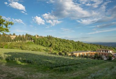 The Castello di Fonterutoli, just a few kilometres from Castellina in Chianti.